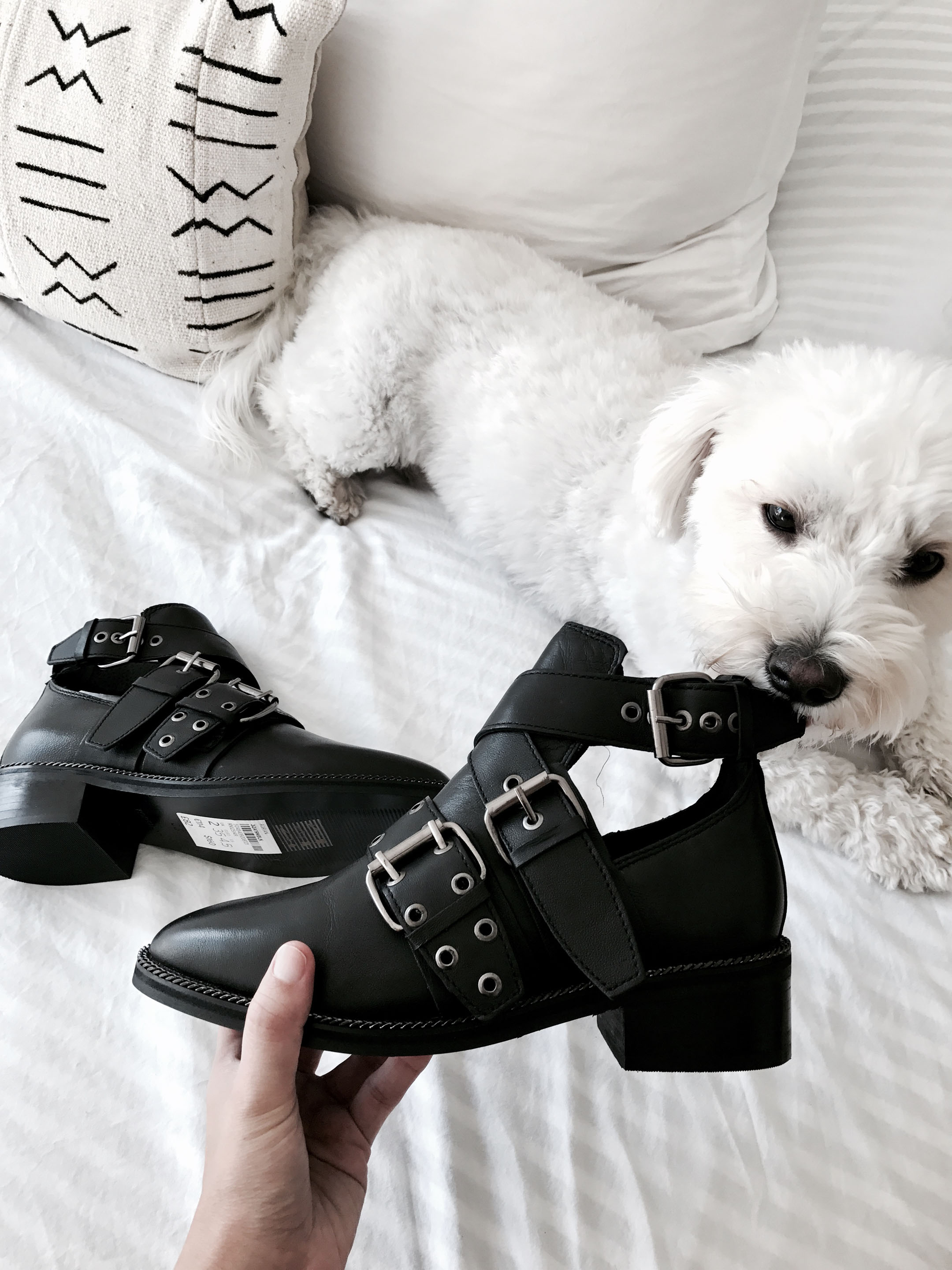 Topshop buckle ankle boots