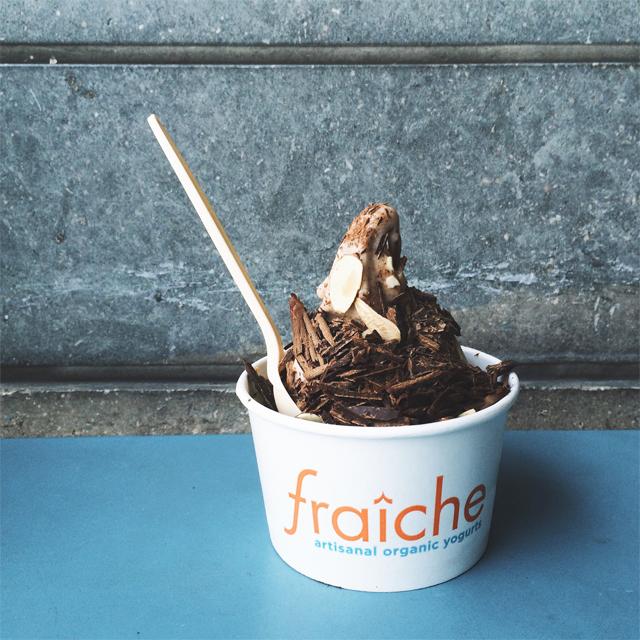 Fraiche Dairy Free ice cream