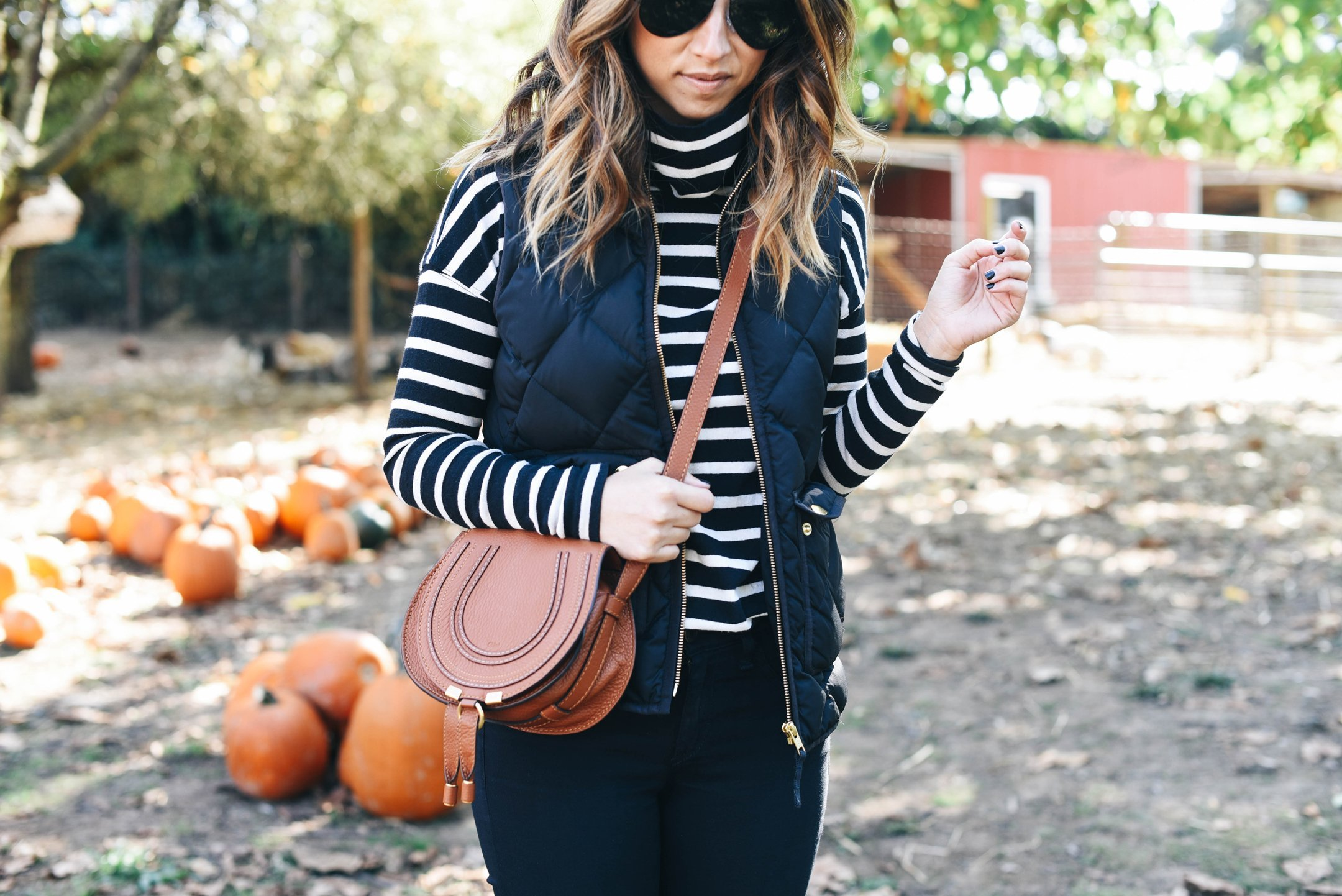 crystalin-marie-wearing-j-crew-factory-striped-turtleneck