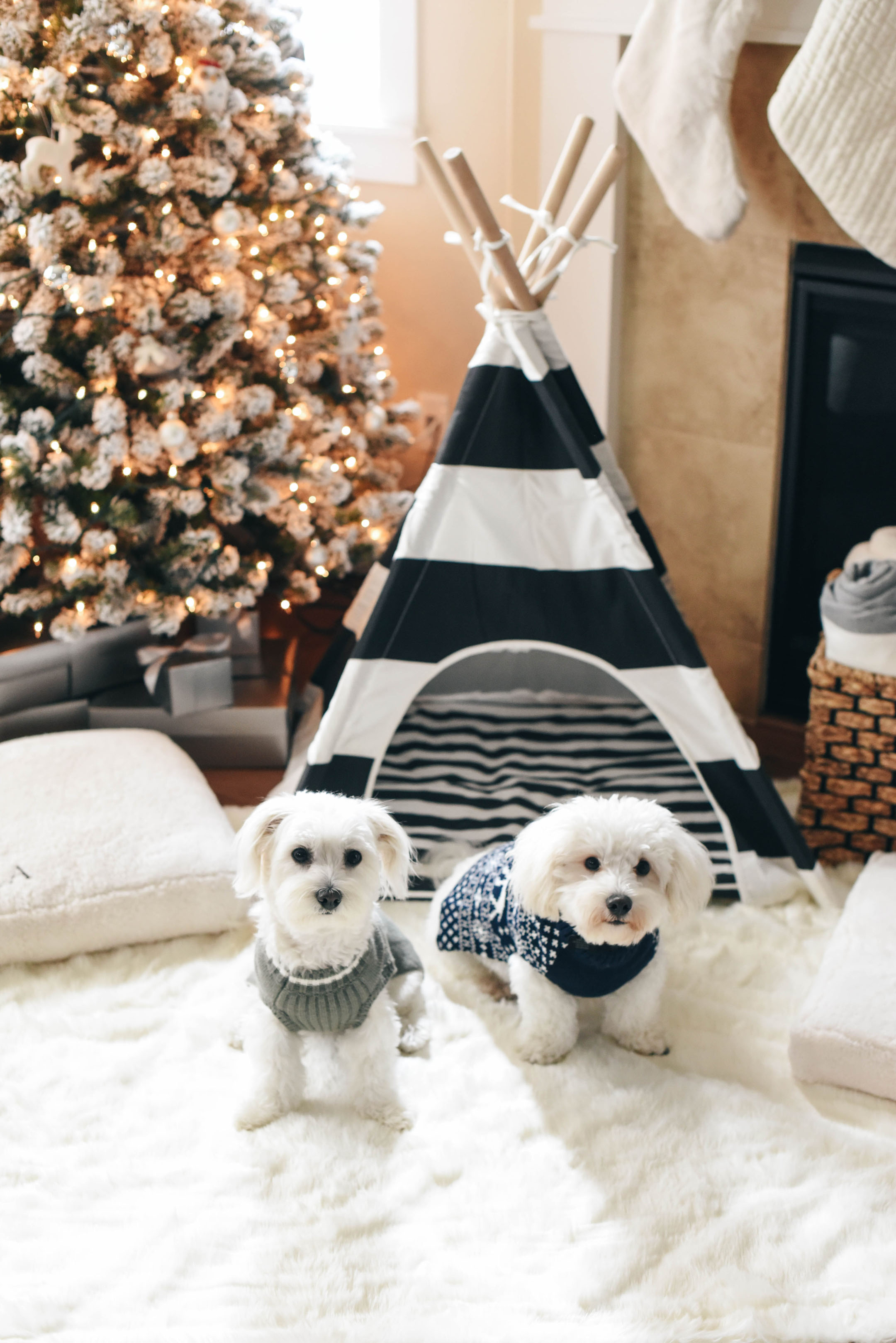 Holiday Gift Guide: For the Dog Lover - Crystalin Marie