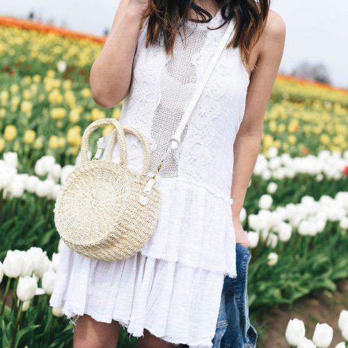 Oregon Tulip farms