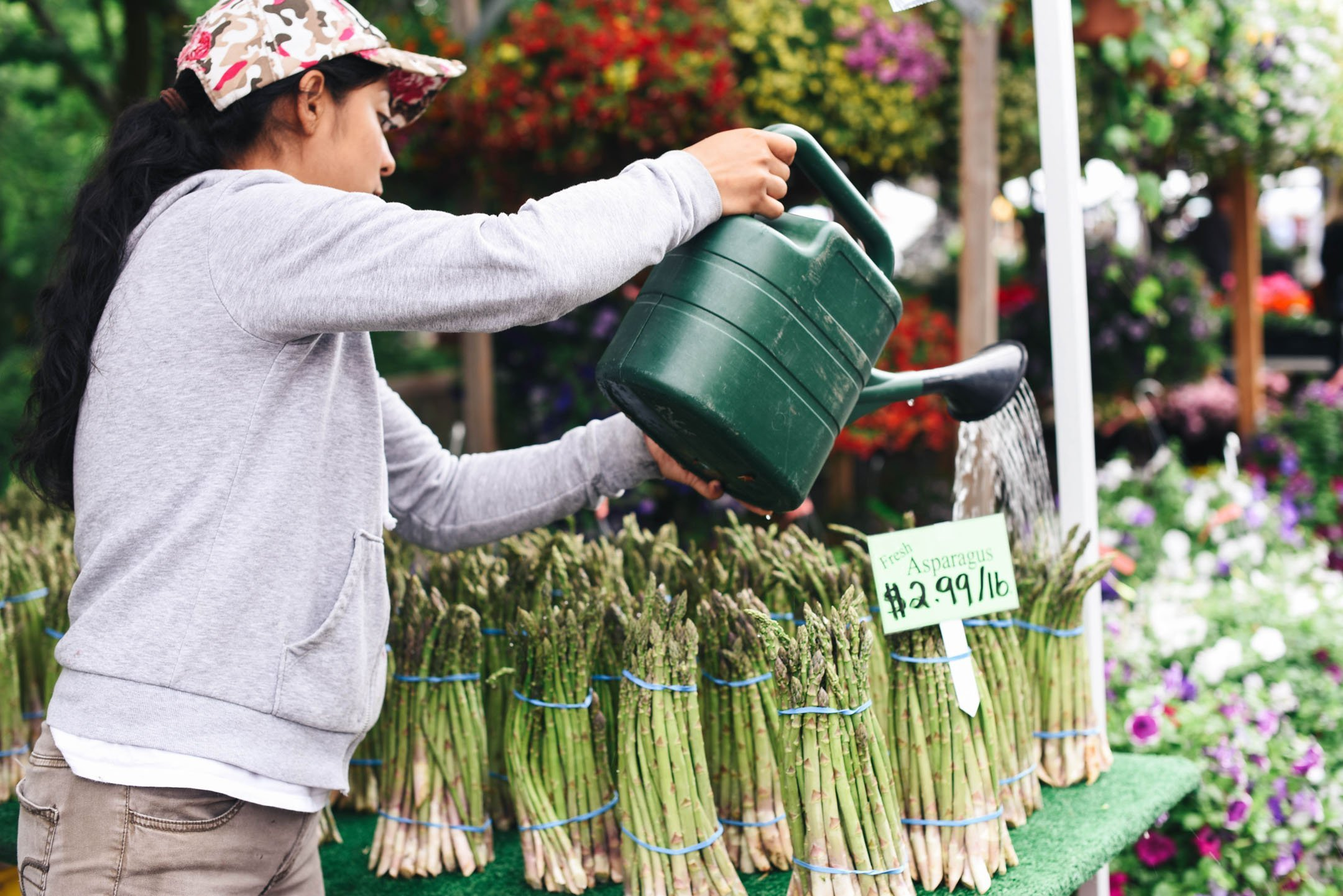 Lake Oswego Farmers Market watering asparagus