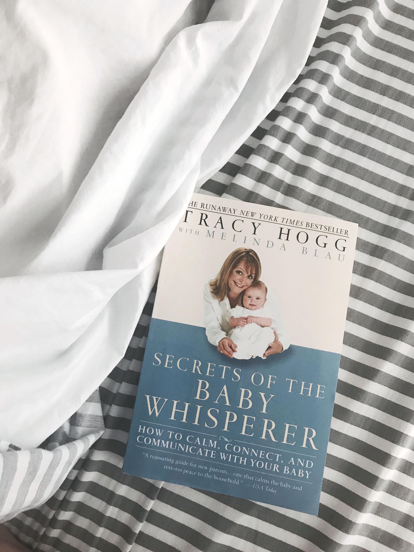 Best pregnancy book