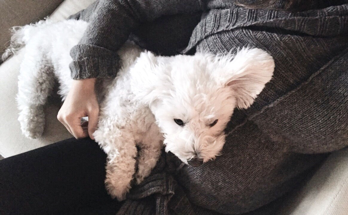 Riley snuggles
