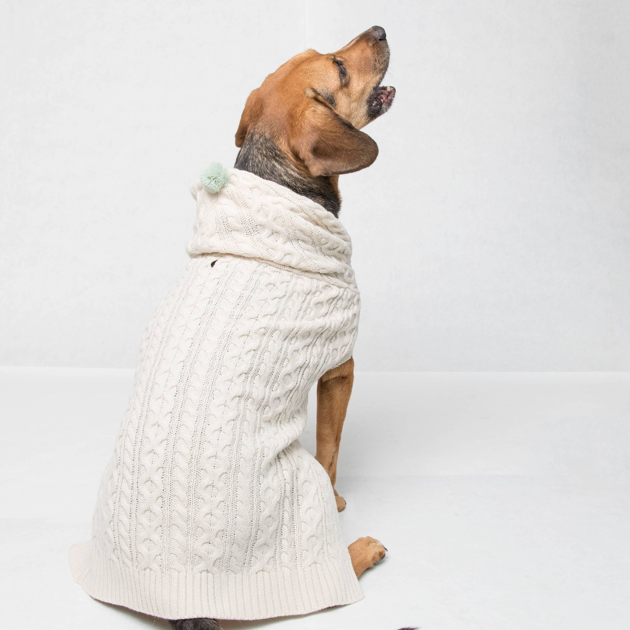 with & delight dog cable knit sweater