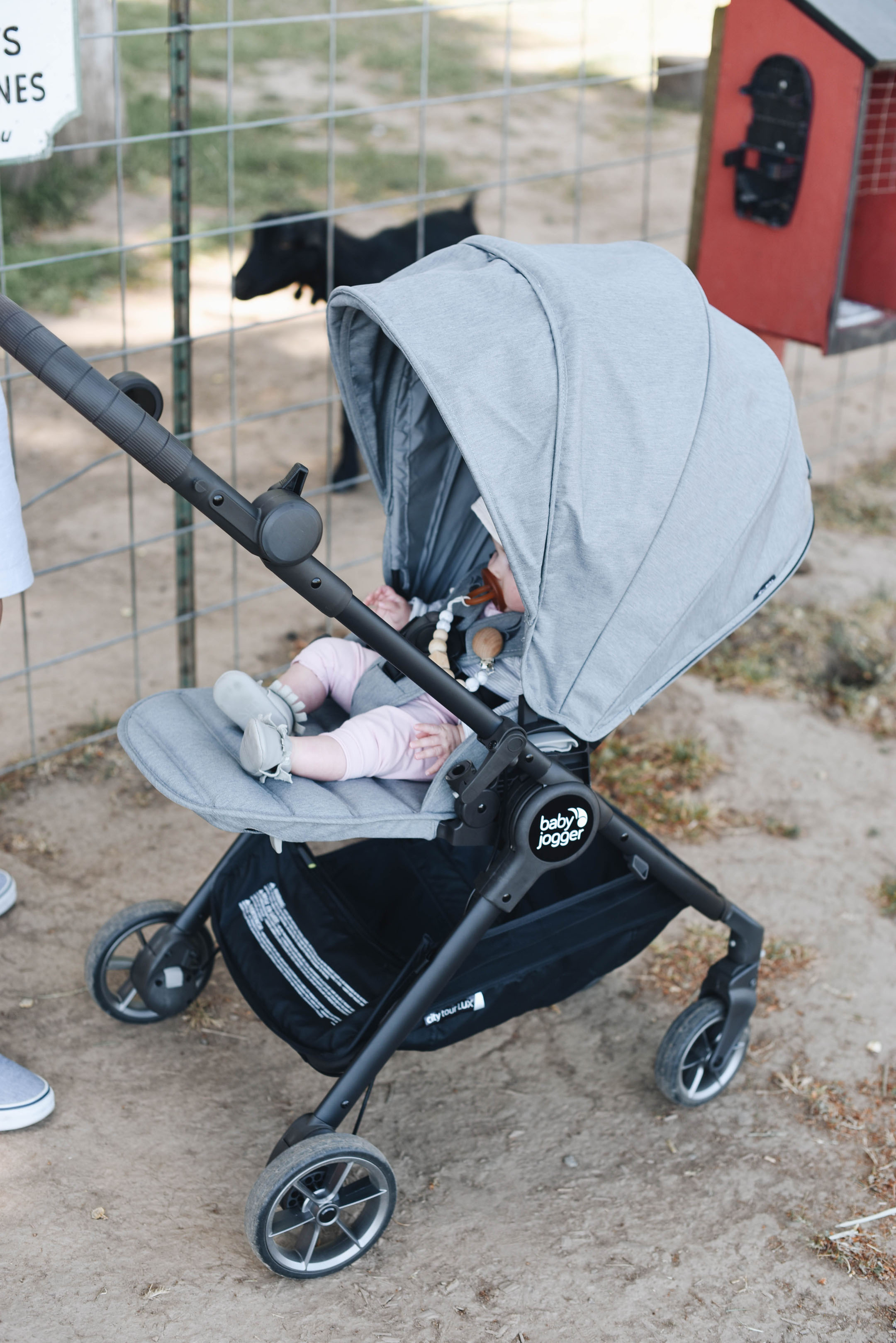 Fir Point Farms With Baby Jogger S City Tour Lux Stroller