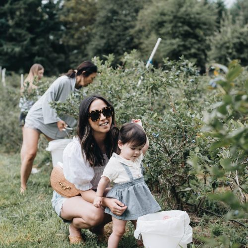 Blueberry Picking in Oregon City